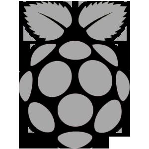 Espace Raspberry
