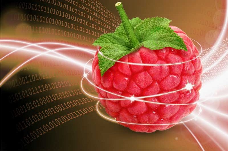 Une Raspberry Pi en Serveur web