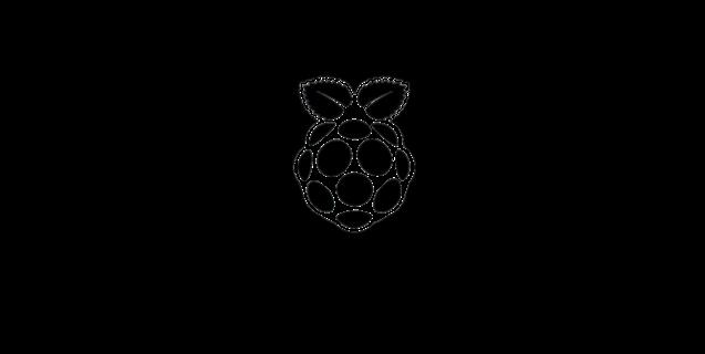 Logo du système RaspiSMS