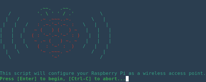 Ascii art displayed when launching hostapd installation script